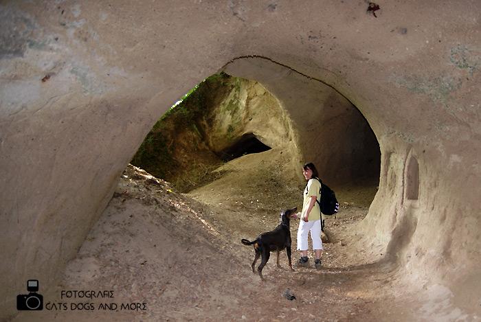 Eine der Trasshöhlen (Bild von einer Wanderung)