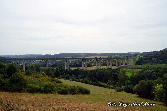 Waldorf Richtung Königsfeld (Seitenansicht)