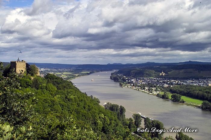 Burg Rheineck (Blickrichtung Bonn)