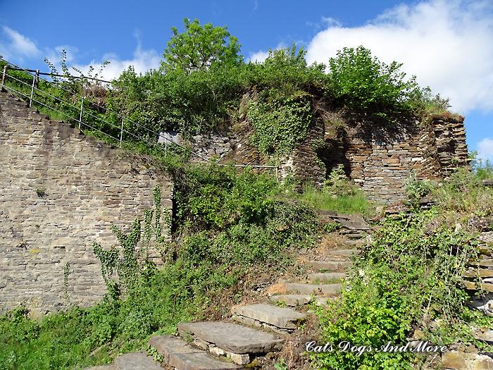 Ruine Saffenburg Mayschoß (nur über Fußweg zu erreichen)