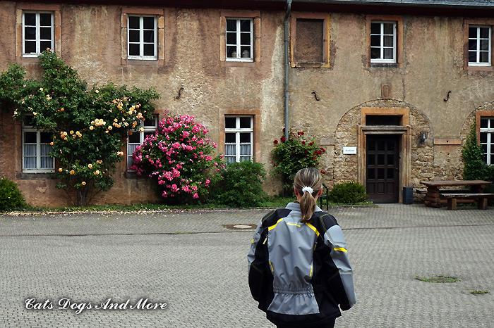 Kloster Steinfeld