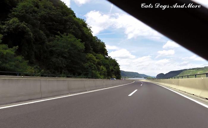 Blick auf den Rhein vor Bad Breisig