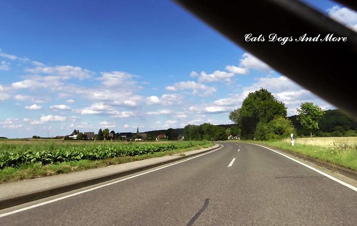 Richtung Vettelhoven