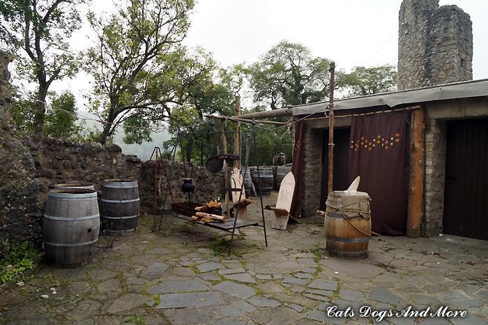 Burg Kerpen (Eifel)