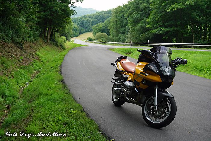Zwischen Adenau und Quiddelbach