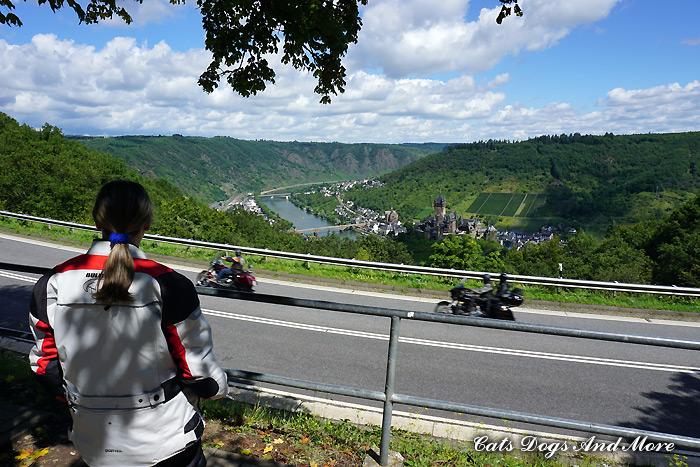 Blick auf die Mosel und die Reichsburg Cochem