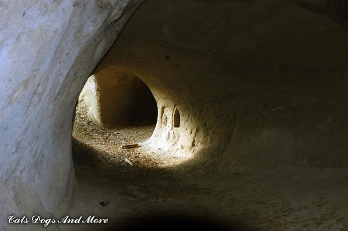 Trasshöhlen am Jägerheim