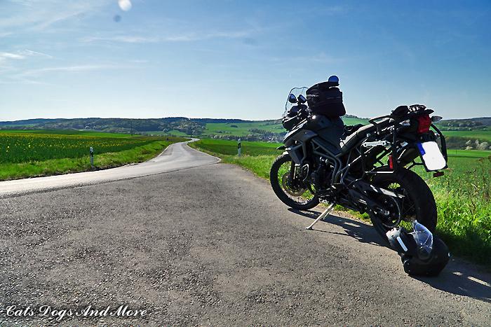 Zwischen Rodder und Dedenbach