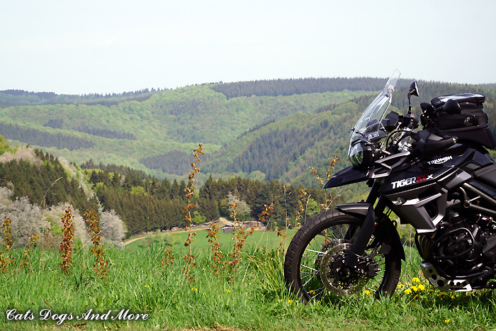 Blick hinab in das Kesselinger Tal in der Ferne