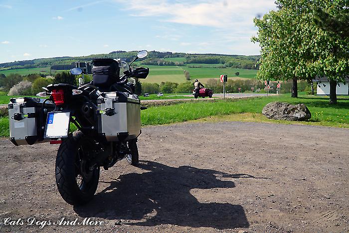 Zwischen Müllenbach und Kelberg
