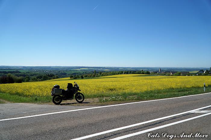 Zwischen Rhein und Mosel