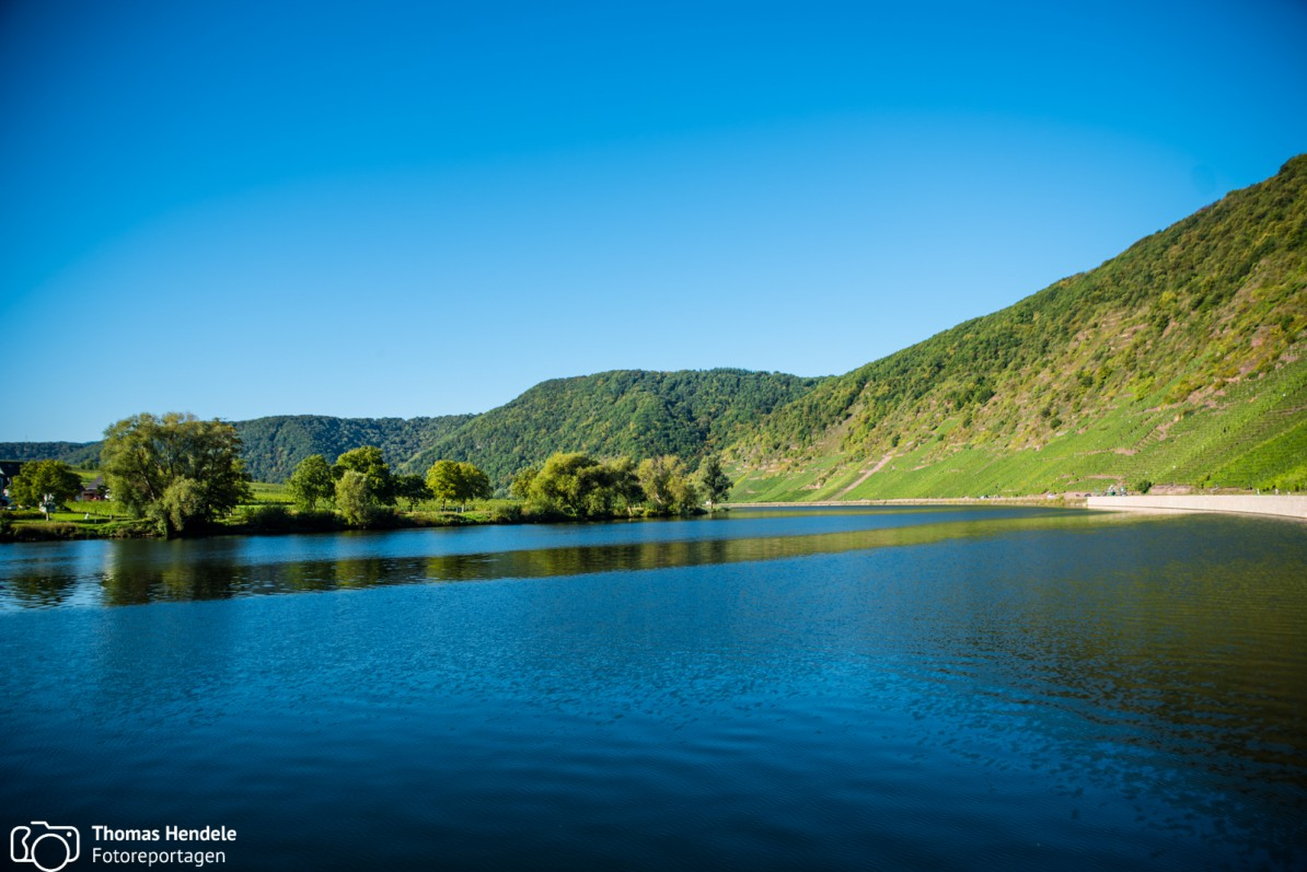 Blick auf die Mosel (Foto: www.thomashendele.de)